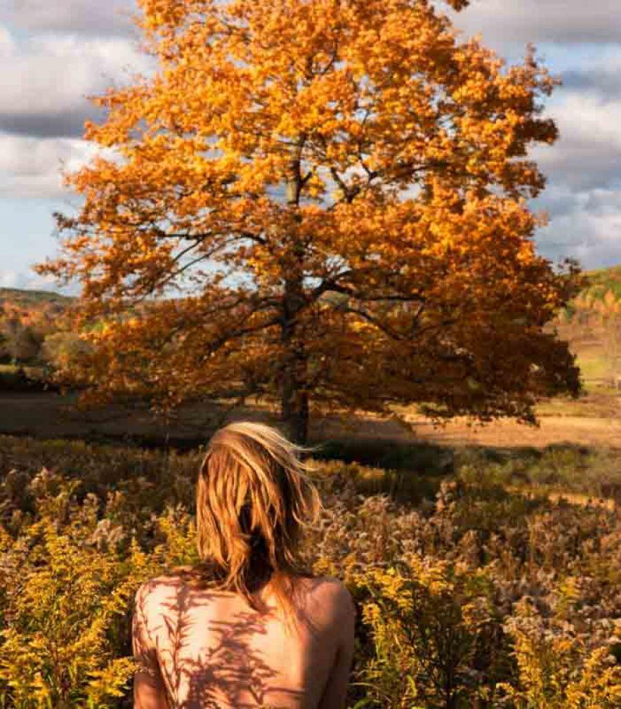 RYAN McGINLEY The Four Seasons @GAMeC