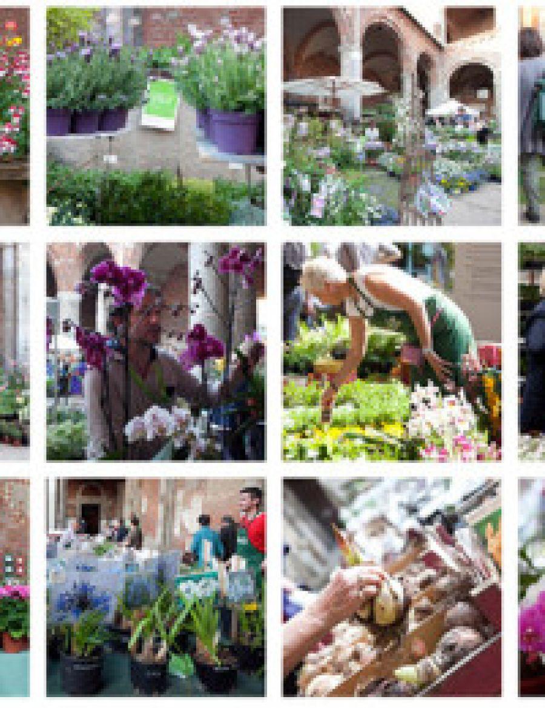 Weekend in compagnia della mostra mercato Flora et Decora