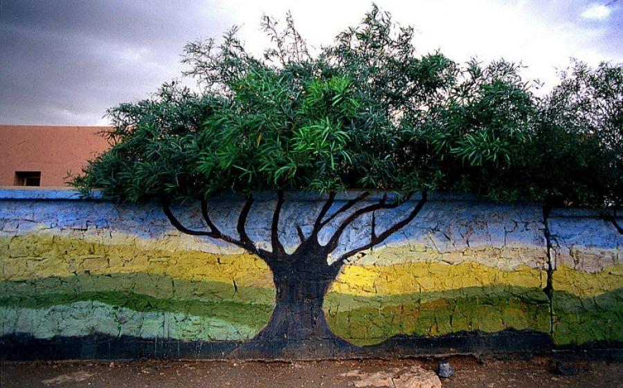 Colors, la mostra fotografica di Paolo Gotti a Bologna