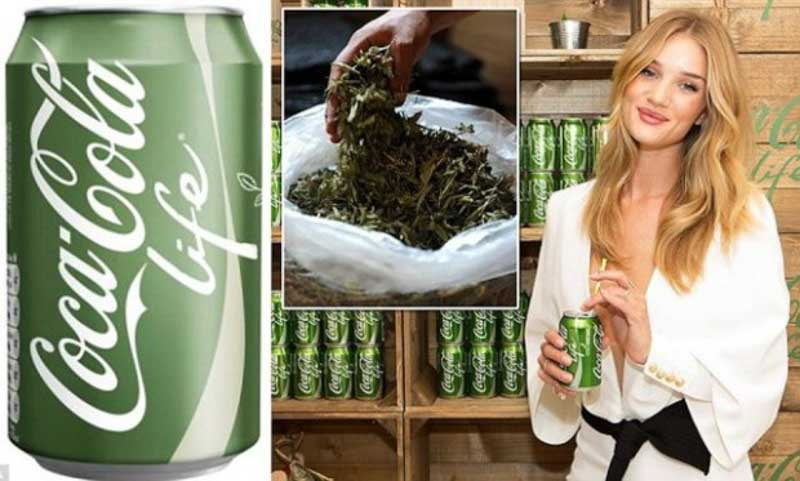CocaColaLife - gallery - nerospinto