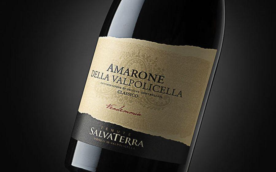 Alla scoperta dei vini della Valpolicella: Tenute SalvaTerra
