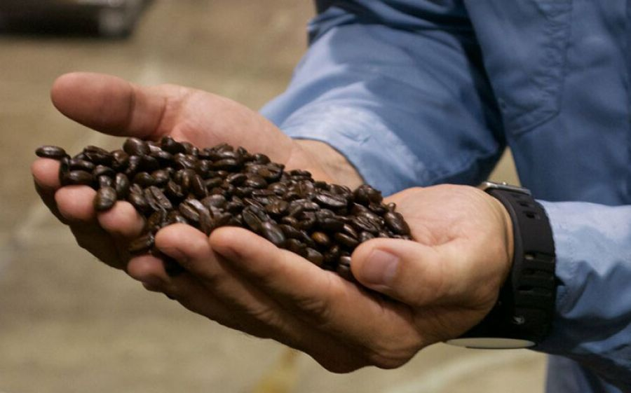 AnimaNera : il caffè portoricano d'eccellenza approda in Italia