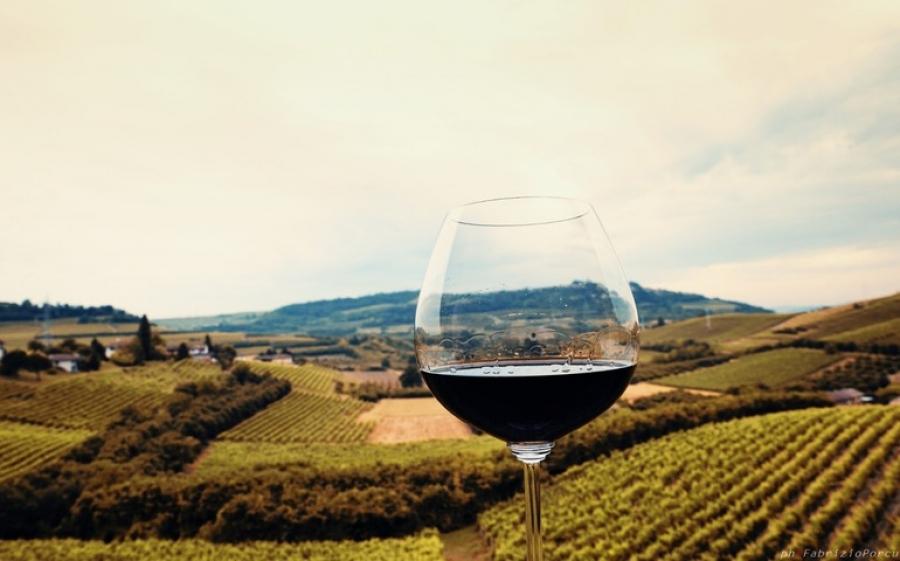 Gastronomix, il Festival di Collisioni culinarie nel Monferrato